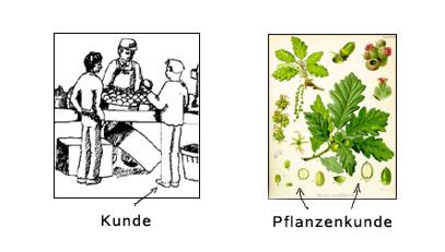 kunde-kuendigen-meaning