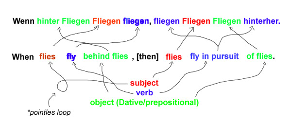 grammar-of-flies